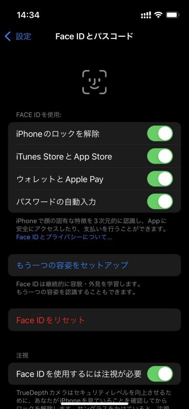 iPhone 13 mini Face ID